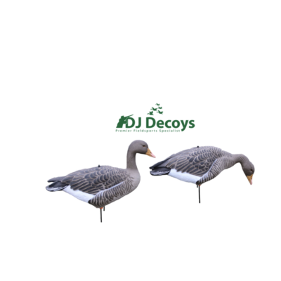 Enforcer Full Bodied Greylag Goose Decoys