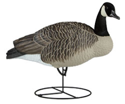 Dakota Decoy Signature Series Upright Geese 6 Pack